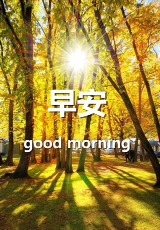 微信good morning